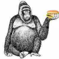 How many people demanding justice for Harambe the gorilla still eat other animals raised in horrific conditions?